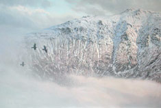 Mountain painting - An Stuc near Ben lawers picture