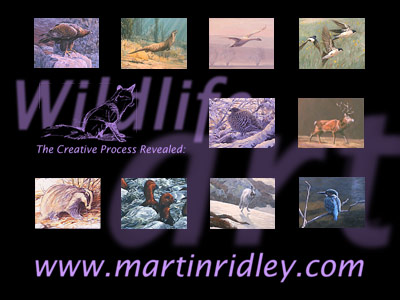 download free wildlife screensavers - wildlife paintings by artist Martin Ridley