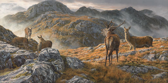 Oil Painting of a Red Deer Stag and Hinds - Stalking Scene