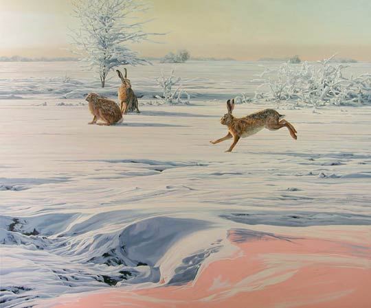 brown hares in snow painting - Lepus europaeus