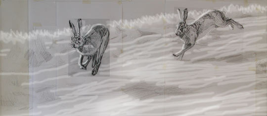 chasing brown hares sketch