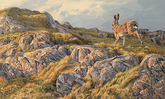 Running brown hare - Oil Painting for Sale