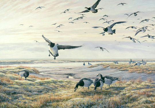 Oil painting of barnacle geese on a saltmarsh