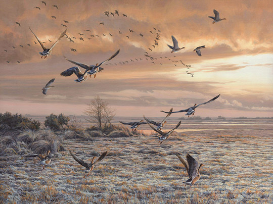 Greylag geese in flight - Oil painting for sale