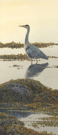 Grey heron at dusk - oil painting of a heron in the water
